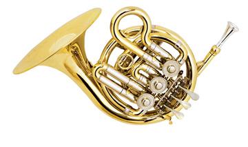 法国号的乐器